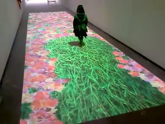 Интерактивный led пол