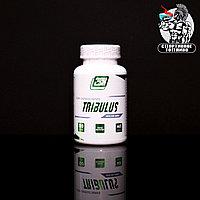 2SN - Tribulus 120капс/40 порций