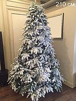Заснеженные новогодние елки