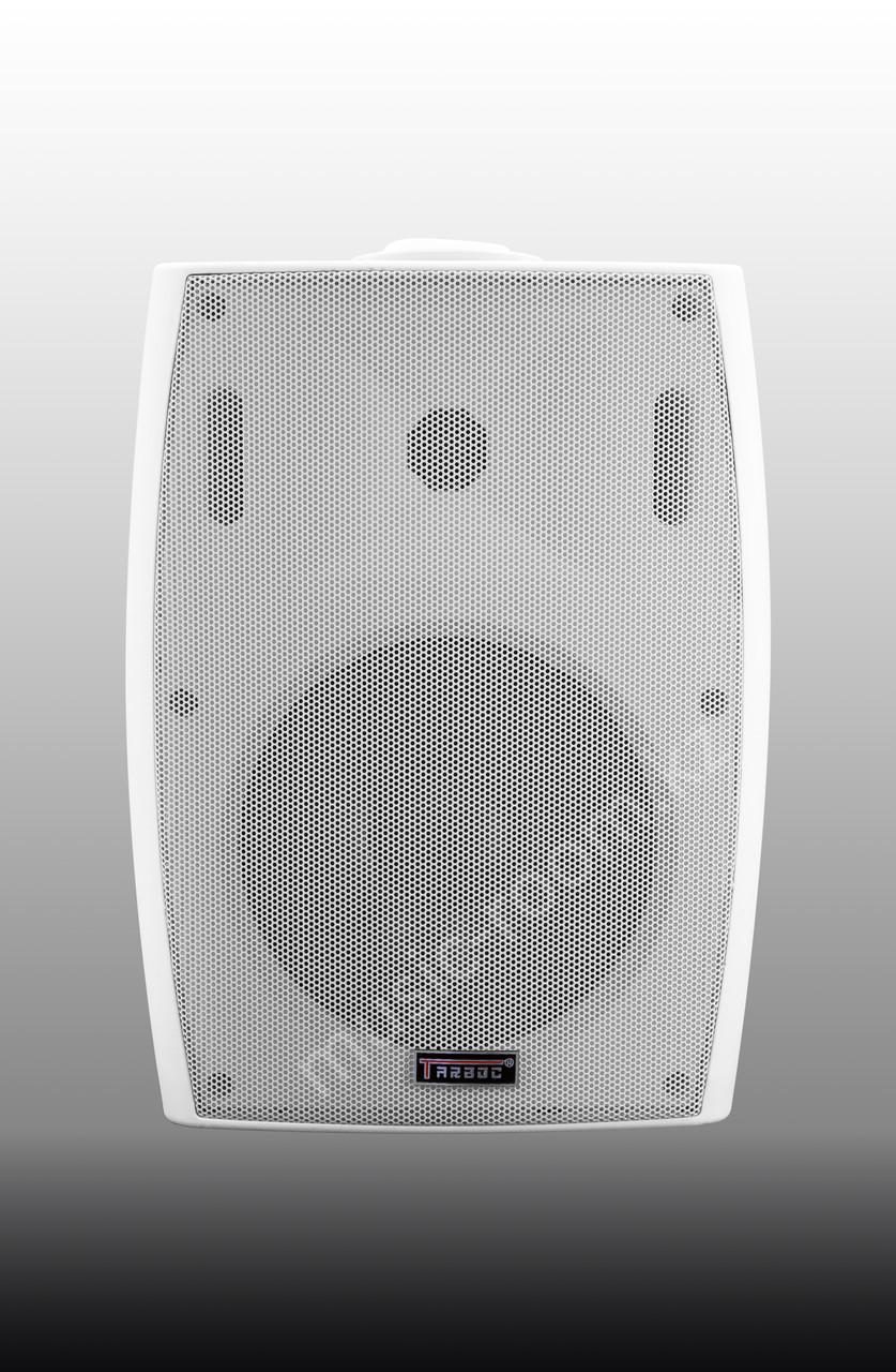 Настенная акустическая система Tarboc FT-206 40ватт