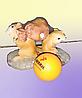 Сувенирки, полевые мышки.