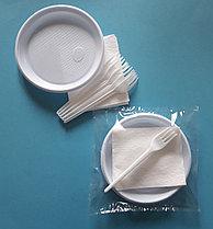 """Набор одноразовой посуды """"На природу"""" на 5 персон (Sherdin)"""