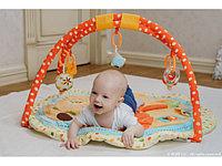 Развивающие игрушки и коврики