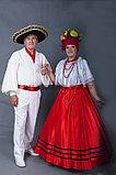 Бразильские костюмы в аренду, фото 2