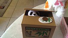 Уценка! Копилка Панда-воришка, фото 2