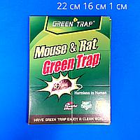 "Ловушка от мышей ""Mouse and Rat"""