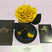 Роза в колбе Premium Sunny Day Солнечный Лучик