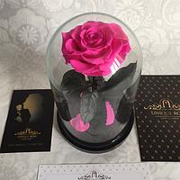 Роза в колбе Premium Raspberry Ягода-малина