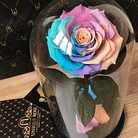 Роза в колбе Premium Мультиколор 2