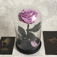 Роза в колбе Premium Сиреневая