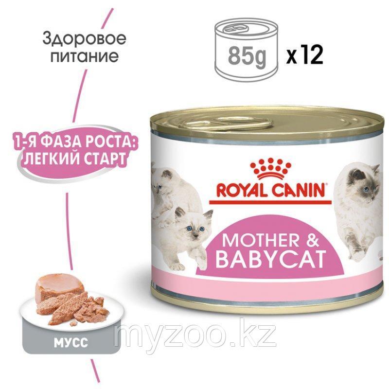 Влажный корм для кормящих кошек и котят до 4х месяцев Royal Canin MOTHER& BABY CAT 195 g