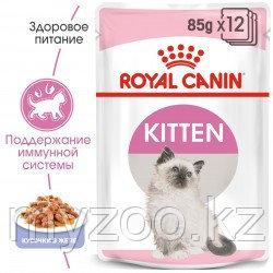 Влажный корм в желе для котят Royal Canin KITTEN IN JELLY 1*85G