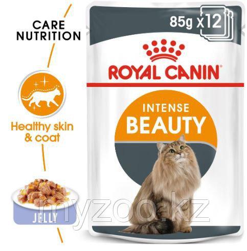 Влажный корм в желе для поддержания красоты кожи и шерсти у кошек Royal Canin INTENSE BEAUTY IN JELLY 1*85G