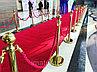 Аренда стоек для ковровой дорожки в Алматы, фото 3