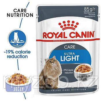 Влажный корм в желе для кошек Royal Canin  ULTRA LIGHT IN JELLY 1*85G