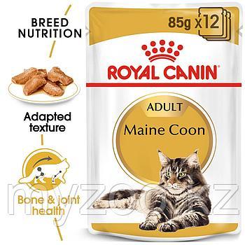 Влажный корм для кошек породы Мейн Кун Royal Canin MAINECOON 1*85