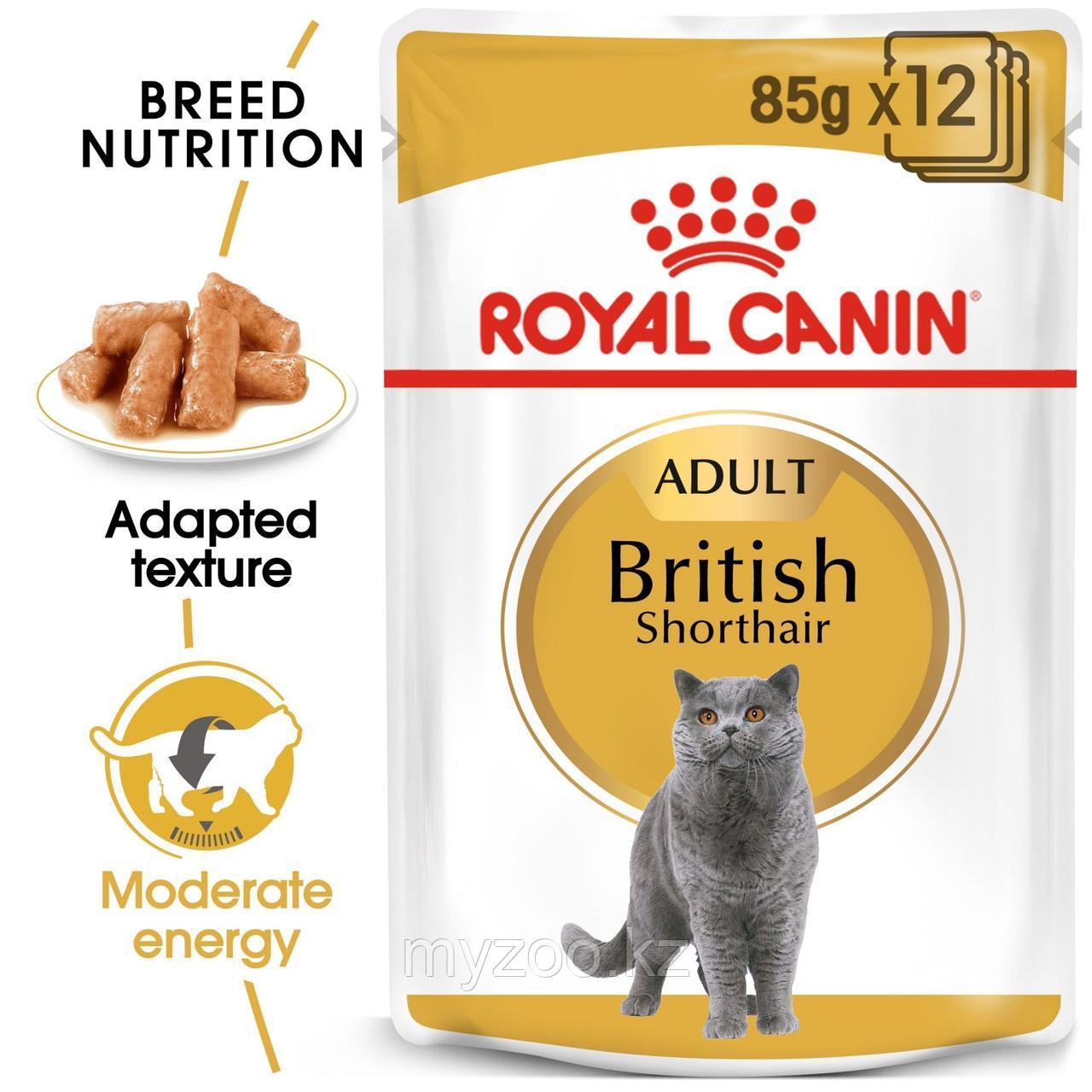 Влажный корм для кошек британской породы Royal Canin BRITISH SHORTHAIR 1*85