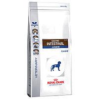 Корм для щенков с нарушениями пищеварения Royal Canin GASTRO INTESTINAL DOG JUNIOR 2,5 kg