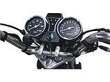 Мопед Racer Alpha RC50, фото 4