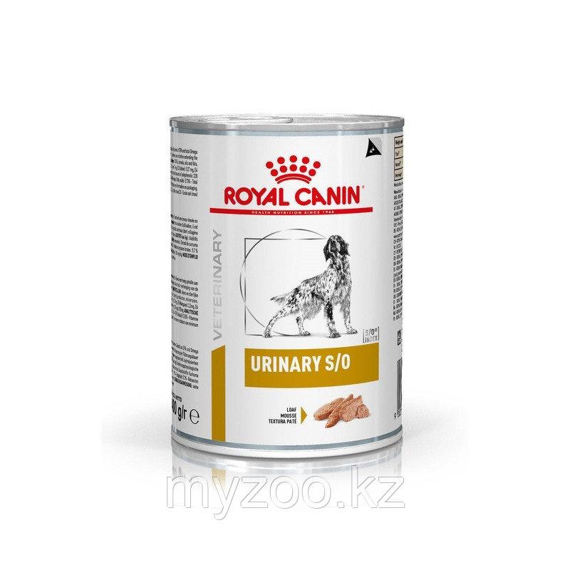 Корм для собак с проблемами мочеполовой системы Royal Canin URINARY DOG CAN 420 g