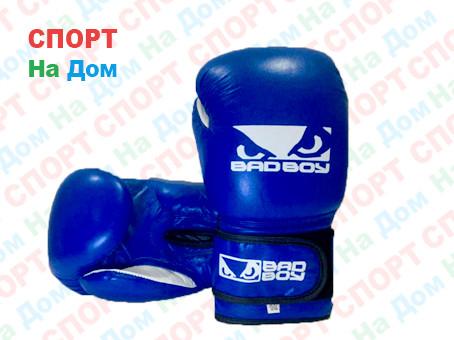 Боксерские перчатки BADBOY кожа (синий)