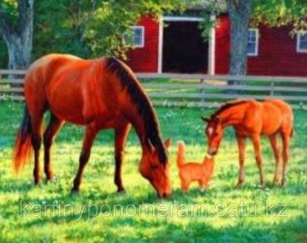 "Картина по номерам ""Лошадки с котенком"""