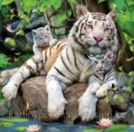 "Картина по номерам ""Белая тигрица с тигрятами"""