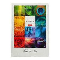 Бизнес-блокнот А5, 96 листов в клетку/линейку, 'Жизнь в цвете', твёрдая обложка, матовая ламинация