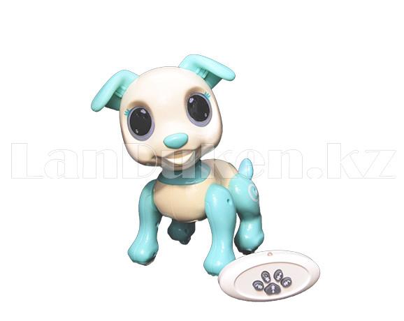 Игрушка робот-собака на батарейках говорящая светящаяся радиоуправляемая B177010 - фото 3