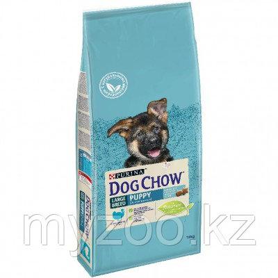 Dog Chow Puppy Large Breed, Дог Чау корм для щенков крупных пород с индейкой, уп. 2.5кг