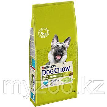 Dog Chow Adult Large, 14 кг Дог Чау корм для взрослых собак крупных пород с индейкой