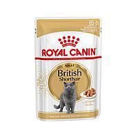 Роял Канин для британцев Влажный корм для кошек