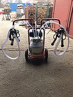 Доильный аппарат для коров 2 пульсатора 1 бидон Arden Турция
