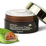 Восстанавливающий крем для лица с фильтратом слизи улитки,Deoproce Snail Recovery Cream, фото 2