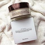 Расслабляющий крем для лица с маслом норки,DEOPROCE Relaxing Care Mink Oil Cream, фото 3