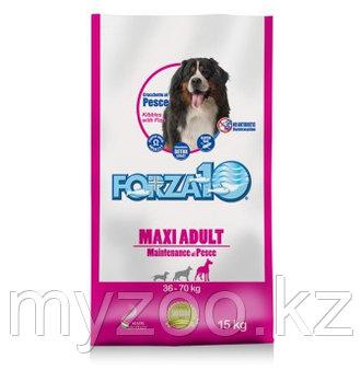 Forza10 Maxi Maintenance pesce, Форца10 корм из рыбы для собак крупных пород, уп. 15кг.