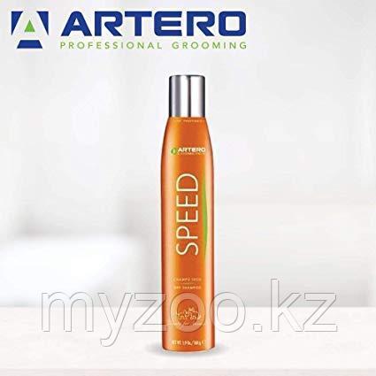 Artero Dry Shampoo Сухой шампунь 300 мл