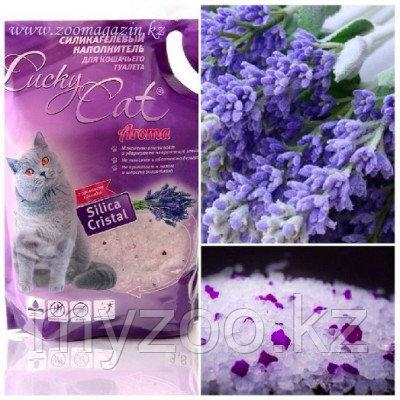 Lucky Cat, Лаки Кэт силикагелевый наполнитель с ароматом лаванды, 11л. (5кг)