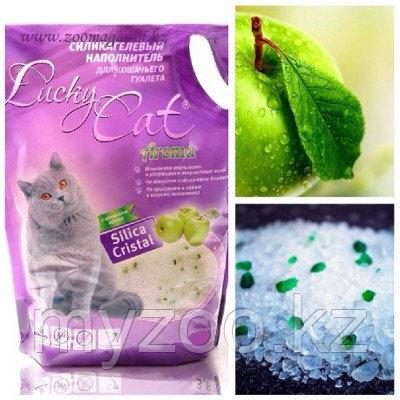 Lucky Cat, Лаки Кэт силикагелевый наполнитель с ароматом яблока, 22л.(10кг.)