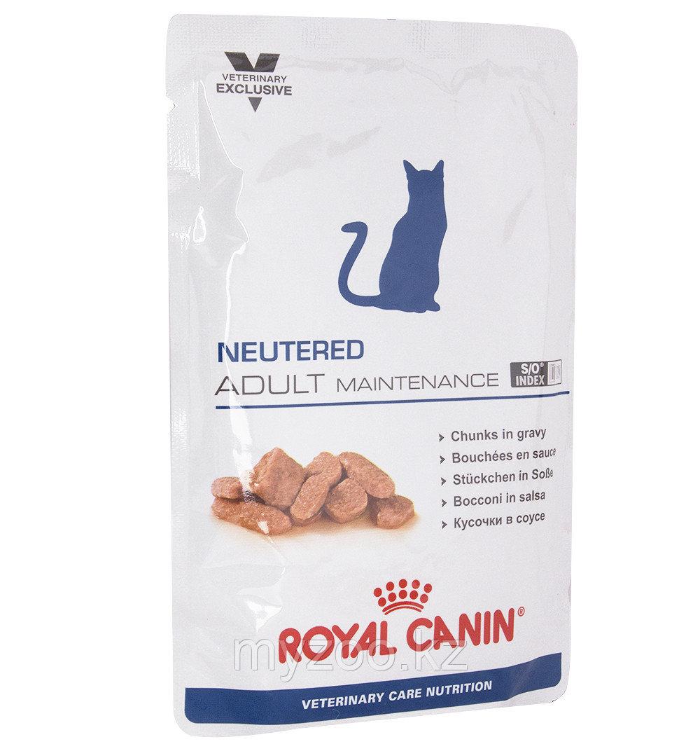 Влажный корм для кастрированных/стерилизованных Royal Canin ADULT MAINTENANCE  CAT POUCH 1*100