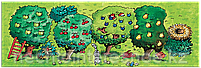 Каркуша: Маленький сад, фото 5