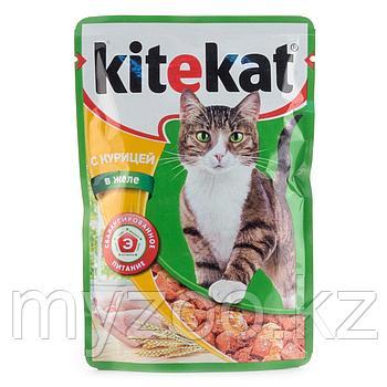 Влажный корм для взрослых кошек  Китекат пауч курица в желе 1*85 гр