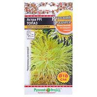 Семена цветов Астра 'Топаз' серия Русский размер I, О, 0,3 г (комплект из 10 шт.)