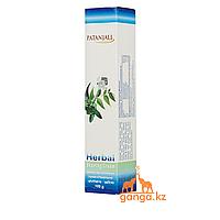 Натуральный крем для бритья (Shaving cream PATANJALI), 100 г.