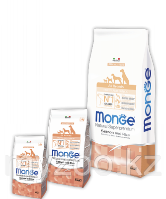 Monge Line All Breeds Puppy&Junior Salmone, Монже сухой корм для щенков и юниоров с лососем и рисом 2,5кг