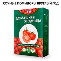 Чудо-набор для выращивания овощей и зелени дома «Сказочный огород круглый год» без ГМО (Помидоры)