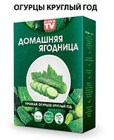 Чудо-набор для выращивания овощей и зелени дома «Сказочный огород круглый год» без ГМО (Огурцы), фото 1