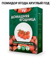 Чудо-набор для выращивания овощей и зелени дома «Сказочный огород круглый год» без ГМО (Помидоры Черри)