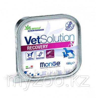 Monge Dog Vetsolution Recovery, Монже для собак после операций и травм, ламистр 150гр.