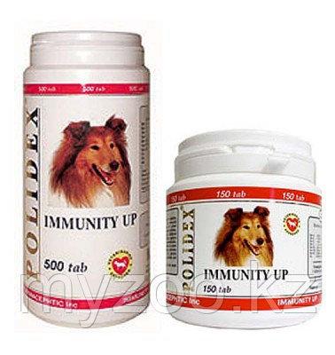 POLIDEX Immunity Up, Полидекс, витамины для поднятия иммунитета, уп. 300 табл.